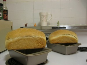 RapidRise bread loaves