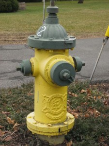 Fire hydrant in Waterford, New York.