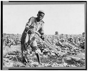Sharecropper youth in Georgia, 1937.