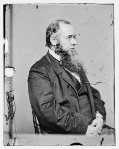 US Secretary of War Edwin M. Stanton during the war.  (Library of Congress)