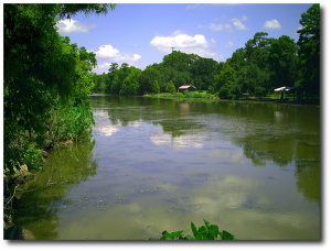 Except for a few little modern touches, Bayou Teche probably looked the same in 1863 as it did in 2009.  (Cajun Byrd)