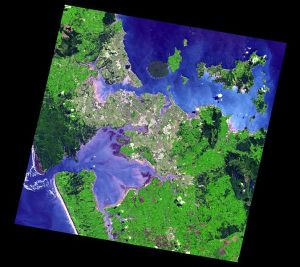 The Auckland volcanic field.  (NASA by way of Wikipedia)