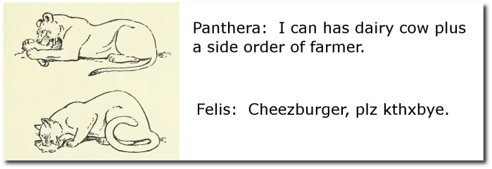 The most important difference between Felis and Panthera.  (Wikipedia)