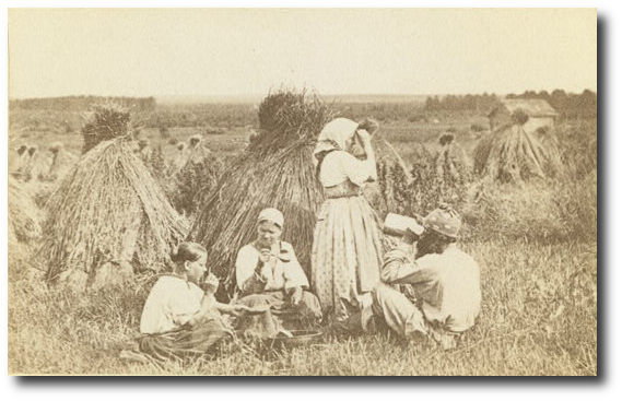 Russian peasants in the late 19th century, eating a meal in a wheat field.  (Library of Congress)