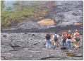 Field trip on Kilauea