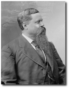 Fitzhugh Lee, between 1870 and 1880.  (Library of Congress)
