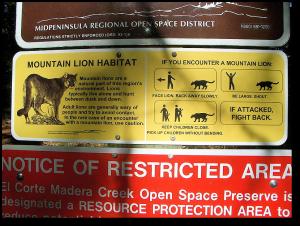 Warning sign at Skegg's Point, San Mateo County, California. - click to enlarge.  (jurvetson via Wikipedia)