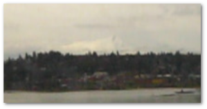 Once in the field, I will Mount Hood looked so majestic from the train, and yet the image I captured was...well...this.  Sigh.