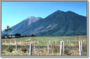 Fuego (left) and double-peaked Acatenango tower over nearby Guatemalan fields.  (USGS)